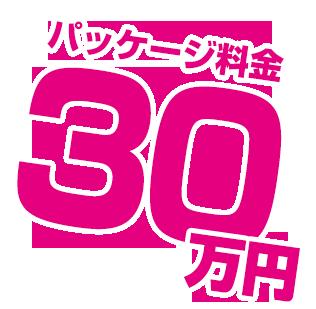 パッケージ料金30万円
